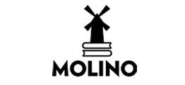 Editorial juvenil Molino