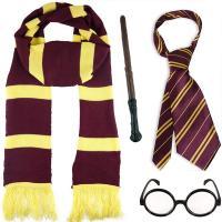 Harry Potter disfraz accesorios