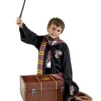 Accesorios disfraz Harry Potter