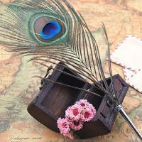 Bolígrafo pluma de ave pavo real