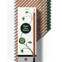 Lapices ecologicos plantables