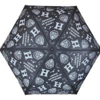 Paraguas de Harry Potter