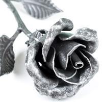 Rosa de hierro forjado