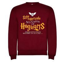 Sudadera Harry Potter niño